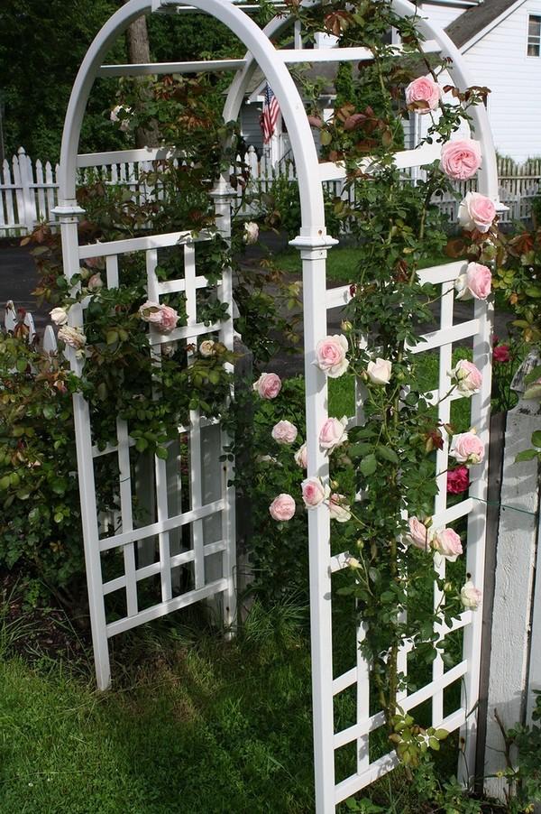 Садовая арка своими руками - 150 фото лучших проектов и варианты украшения садовой арки