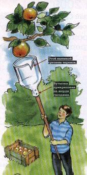 Садовый опрыскиватель для обработки деревьев: как выбрать аппарат с длинной штангой для опрыскивания высоких деревьев? как сделать своими руками?