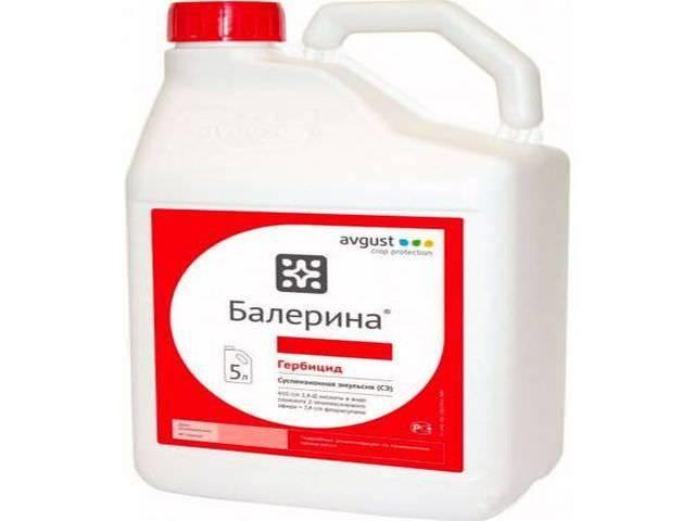Инструкция по применению кассиуса и состав гербицида, дозировка и аналоги