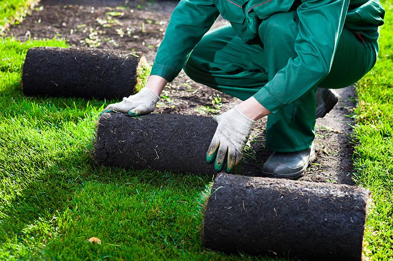 Искусственный газон: описание видов, технология производства и особенности самостоятельной укладки
