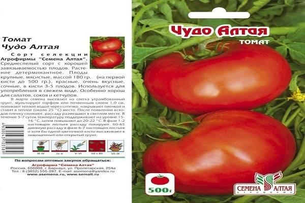 Характеристика томатов сорта шоколадное чудо