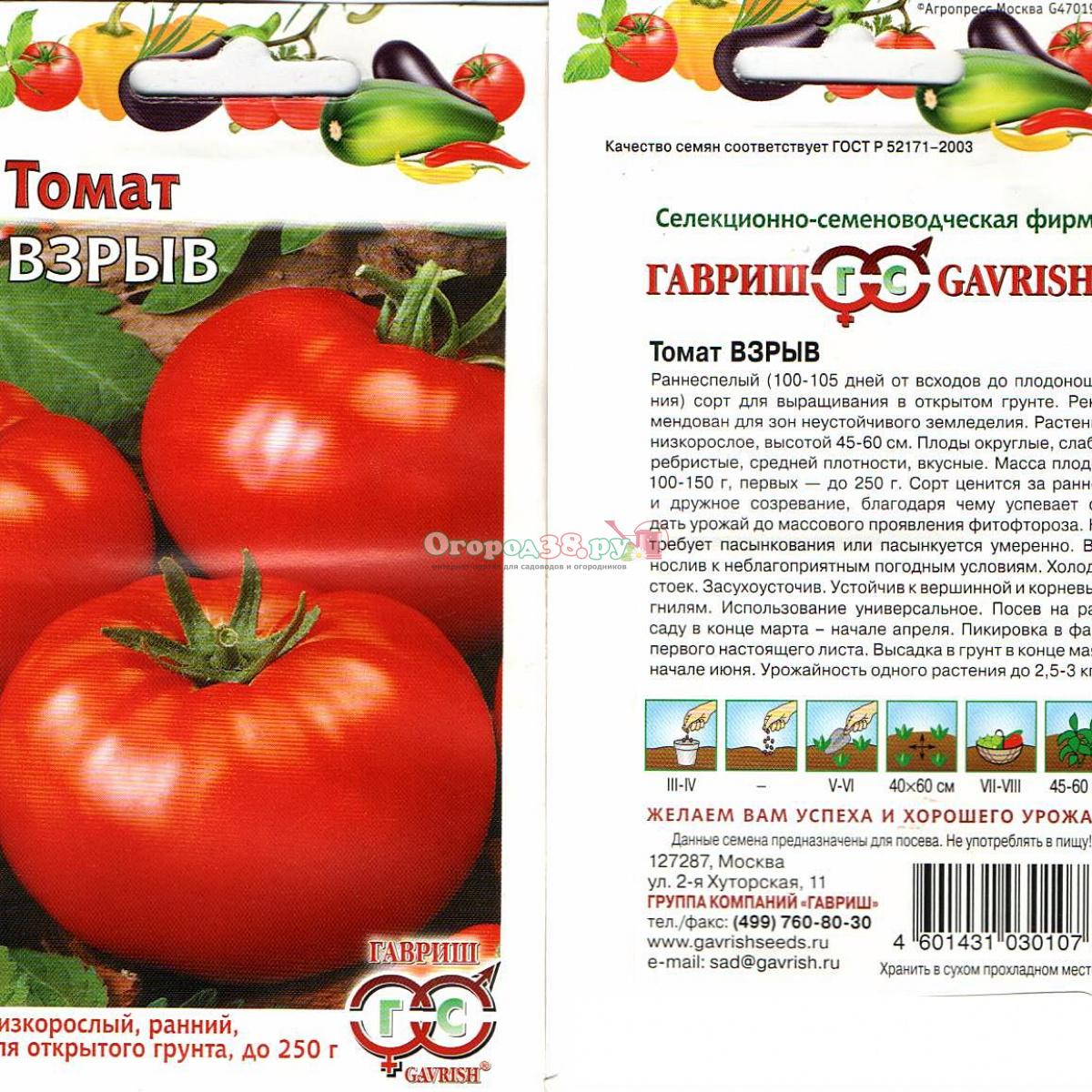 Томат дебют - описание сорта, характеристика, урожайность, отзывы, фото