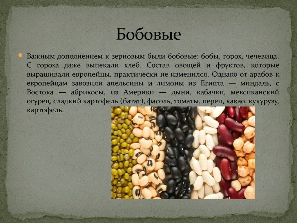 Подробно о фасоли. выращивание, посадка и уход. описание, сорта. фото — ботаничка.ru