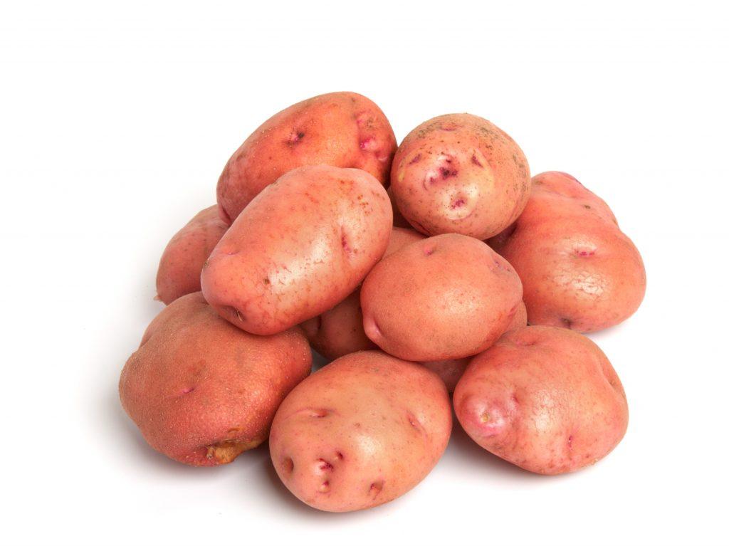 Описание сорта картофеля снегирь, особенности выращивания и ухода - всё про сады