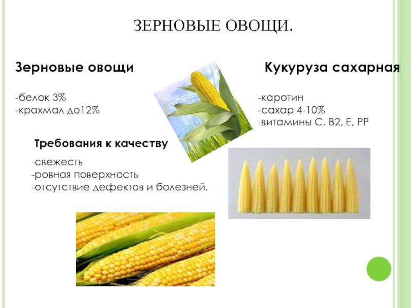 ✅ кукуруза это бобовые или злаковые - питомник46.рф