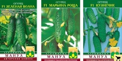 Огурец марьина роща f1: подробное описание урожайного корнишонного гибрида, отзывы и особенности выращивания