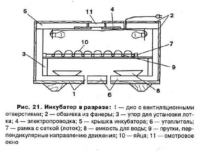 Инкубатор своими руками: разнообразие самодельных инкубаторов. 120 фото инкубаторов из пенопласта, фанеры, старого холодильника