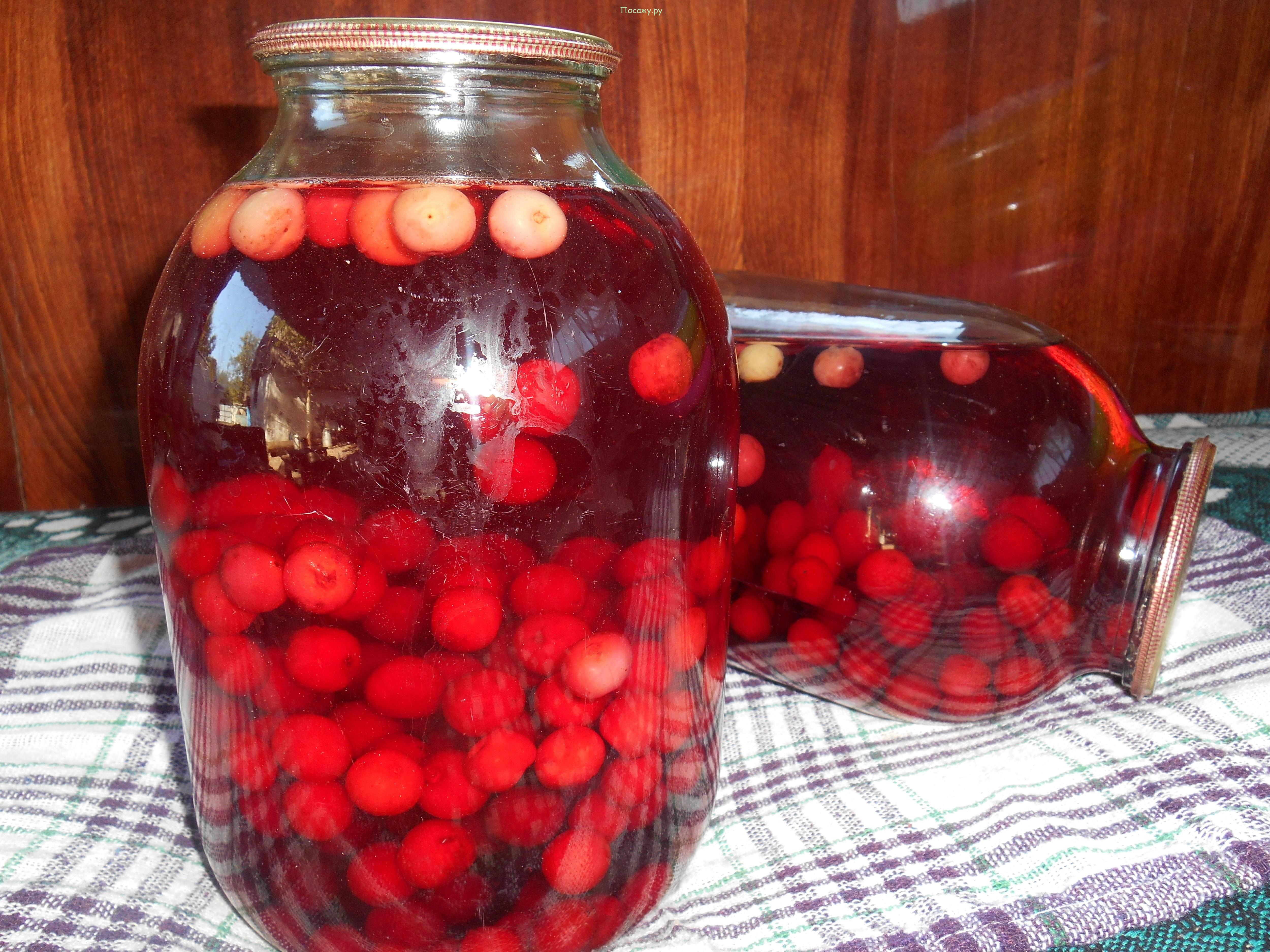 Компот из вишни на зиму - как приготовить по правильному рецепту вкусно и просто