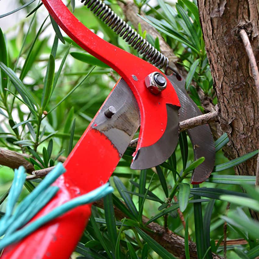 Сучкорезы для обрезки деревьев: лучшие садовые инструменты
