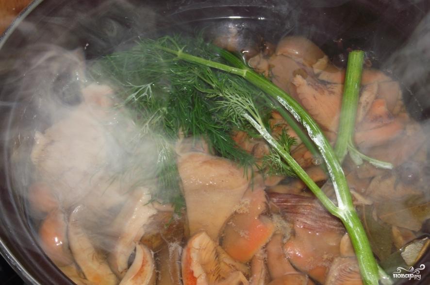 Рыжики на зиму — рецепты заморозки, засолки быстрым, холодным и горячим способом, маринованные в банке. икра из рыжиков для зимы