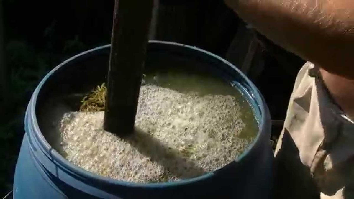 Правила применения и польза рыбной муки как удобрения для огорода