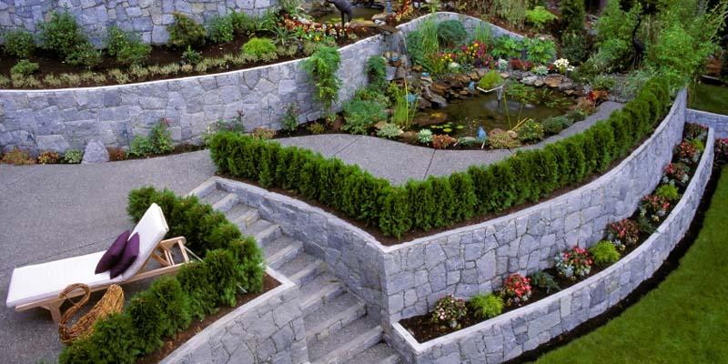 Топиарий в саду своими руками: простые идеи организации и использования (110 фото + видео)