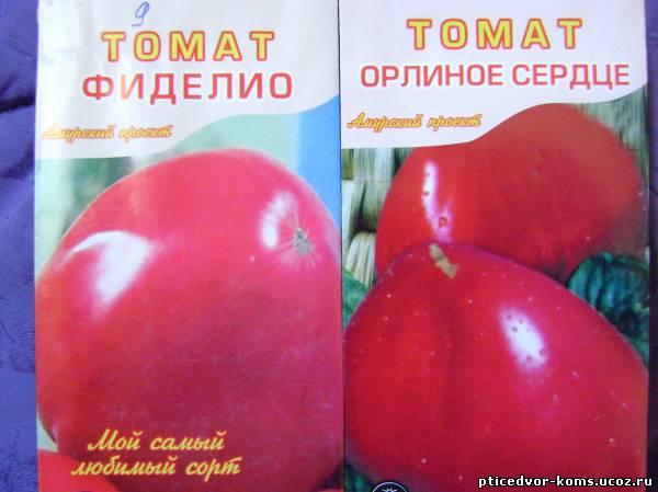 Томат фиделио: фото и описание сорта, его урожайность
