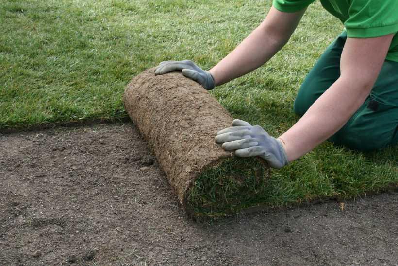 Укладка искусственного газона – как выбрать, правила монтажа