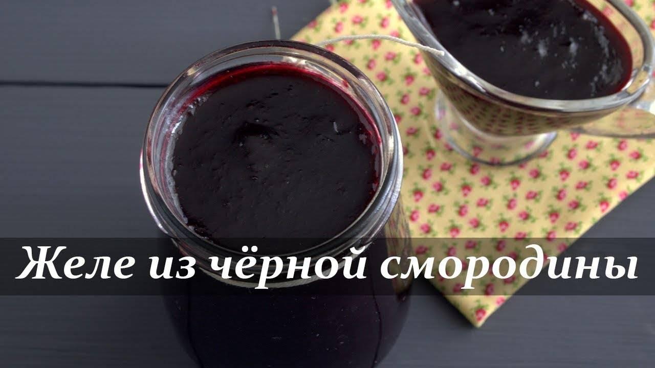 Варенье из красной смородины рецепт 5-минутка, как желе. варенье из красной смородины: лучшие рецепты.