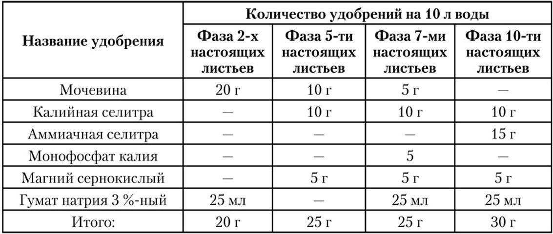 Описания калийных удобрений, какие лучше выбрать и инструкция по применению
