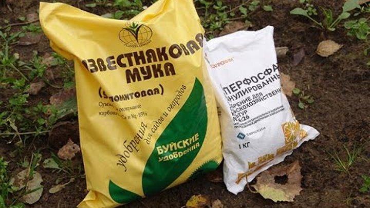 Внесение удобрений в почву земельного участка