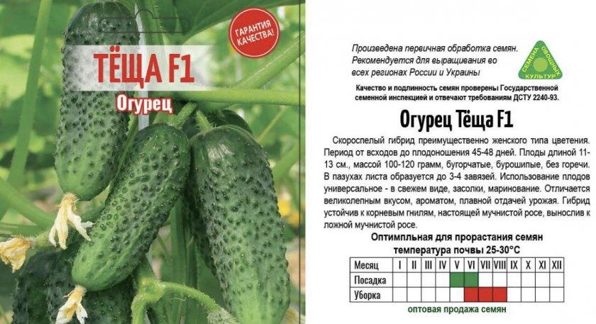 Огурец муму f1: характеристика и описание гибридного сорта с фото