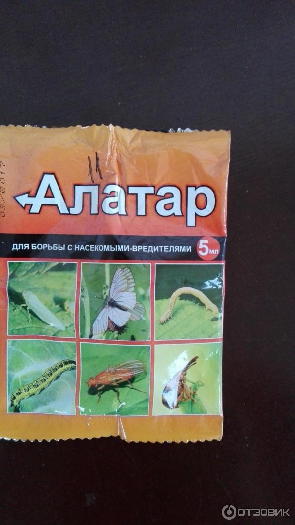 Алатар - инсектицид, инструкция по применению, как разводить от паутинного клеща