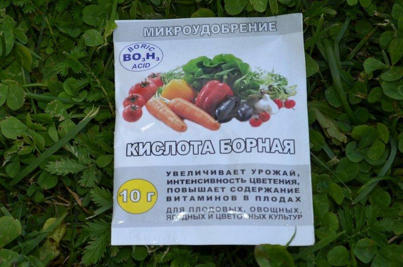 Борная кислота для помидоров и огурцов, опрыскивание