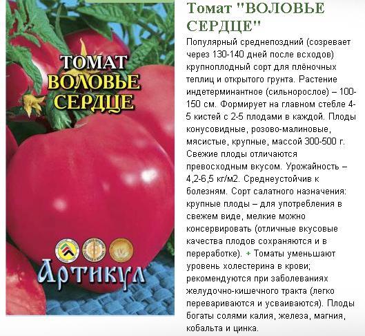 "Характеристика и описание томата ""раджа"""