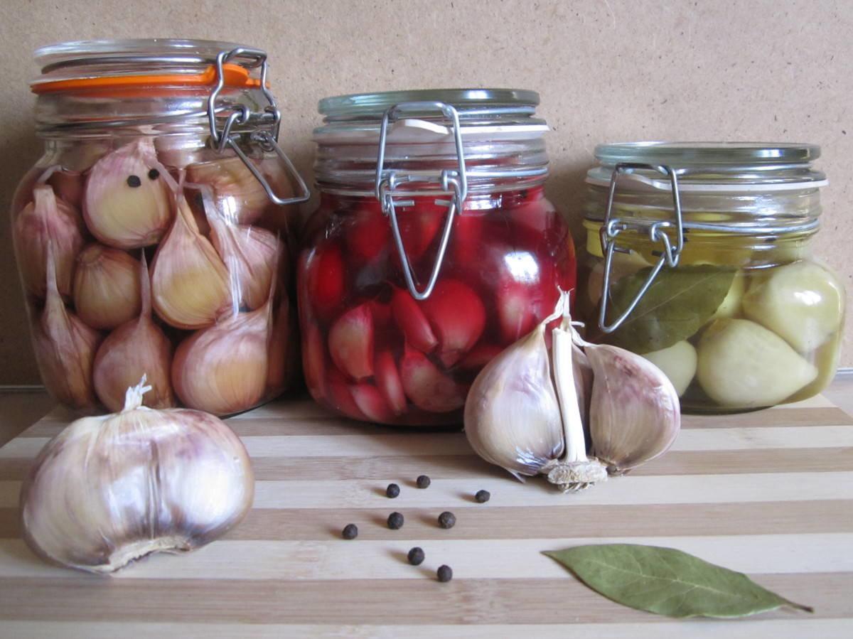 Чеснок на зиму: как заготовить консервацию в домашних условиях