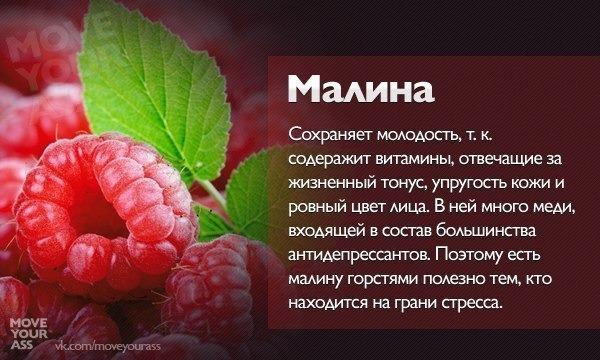 Польза и вред вишни — 8 доказанных свойств для здоровья организма, а также противопоказания