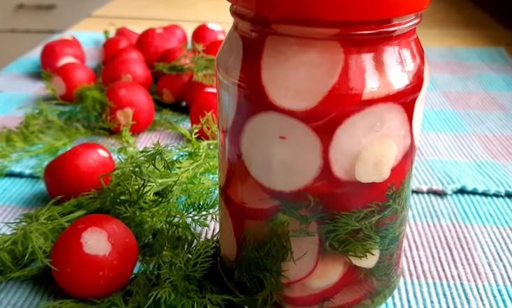 Редиска на зиму – рецепты маринования, заготовка салатов + видео