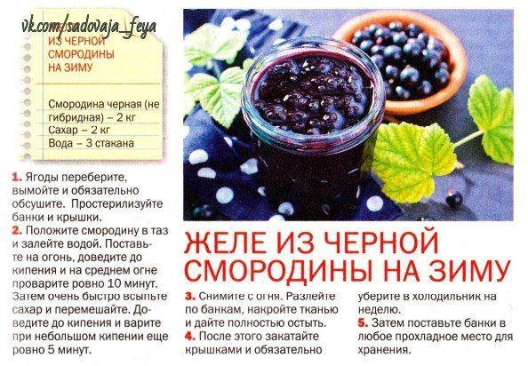 Варенье из черной смородины - 5 рецептов. черная смородина рецепты на зиму.