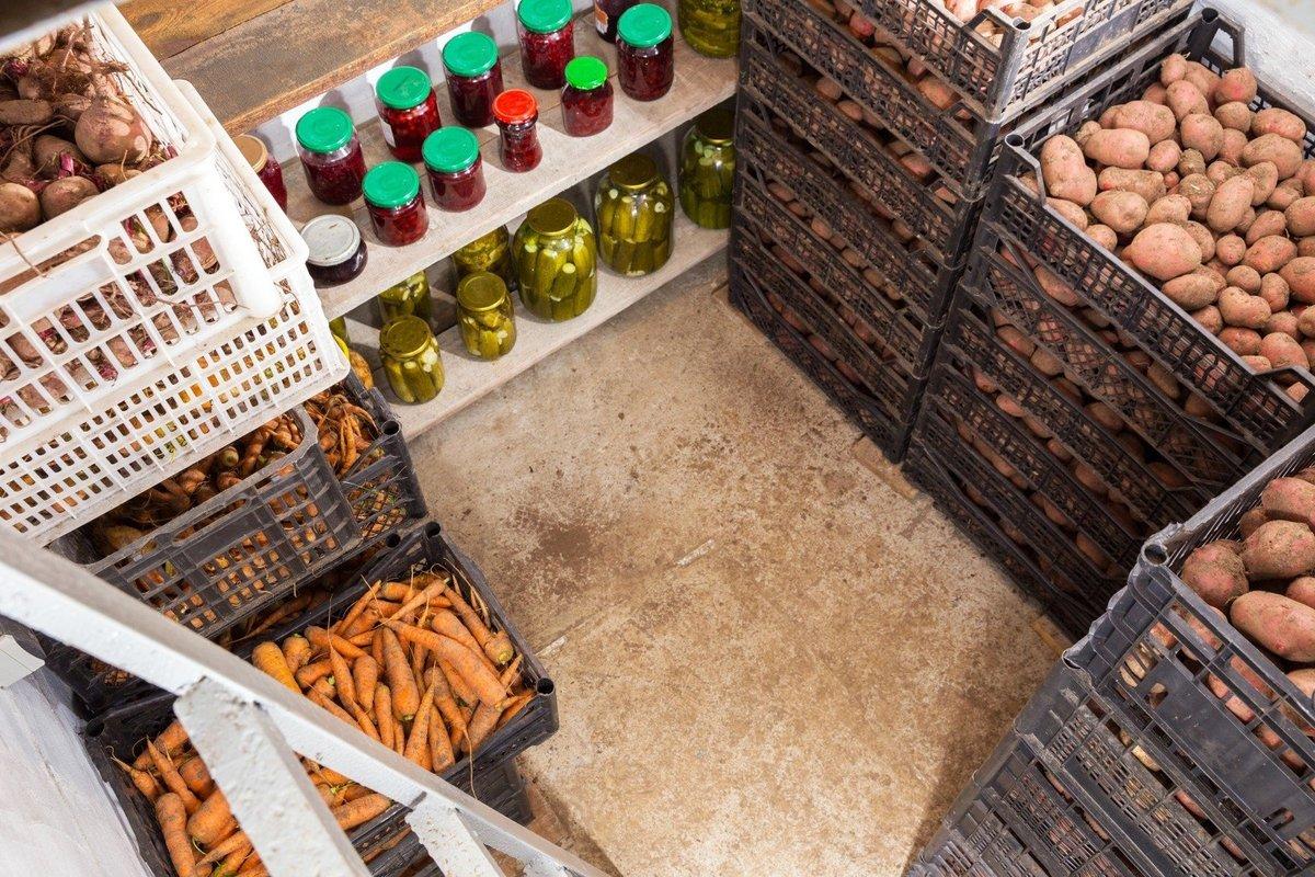 Как хранить морковь на балконе зимой, можно ли это делать в домашних условиях в квартире и если да, то какую температуру соблюдать русский фермер
