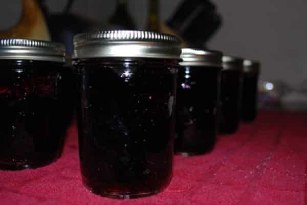 Желе из черники на зиму: подборка простых рецептов приготовления