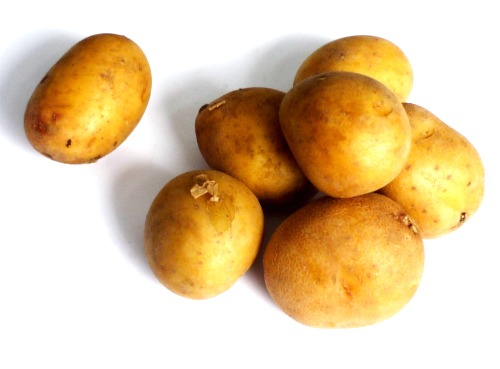 Характеристика, описание, урожайность, отзывы и фото сорта картофеля «зекура».