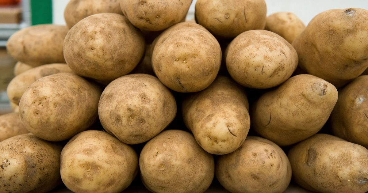 Что собой представляет сорт картофеля каратоп?