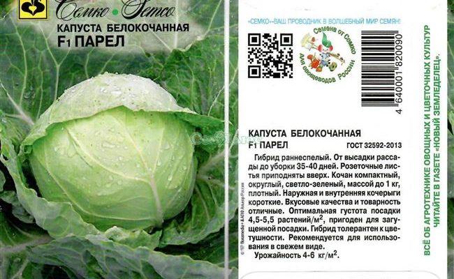 Капуста центурион: описание сорта, выращивание и уход в открытом грунте с фото