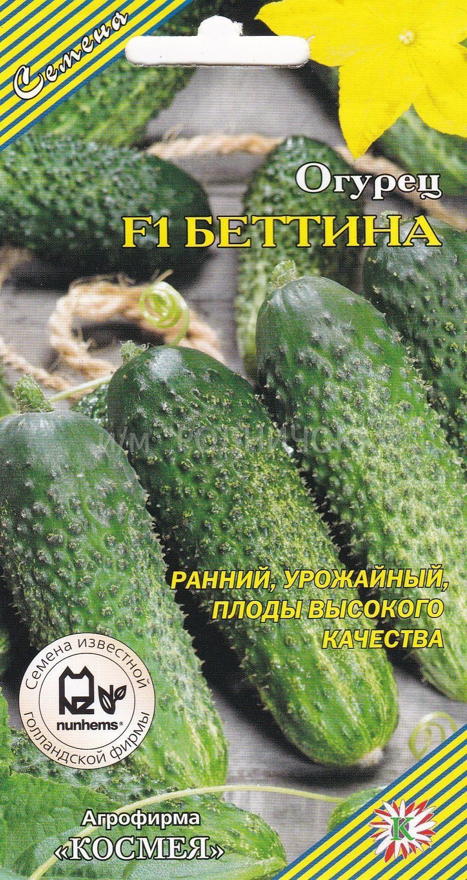Огурец беттина f1: описание сорта с фото, отзывы о семенах и урожае, особенности выращивания