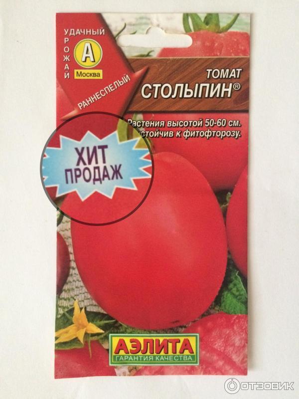 """Томат """"столыпин"""": описание сорта и фото, характеристики плодов помидоров и советы по их выращиванию русский фермер"""
