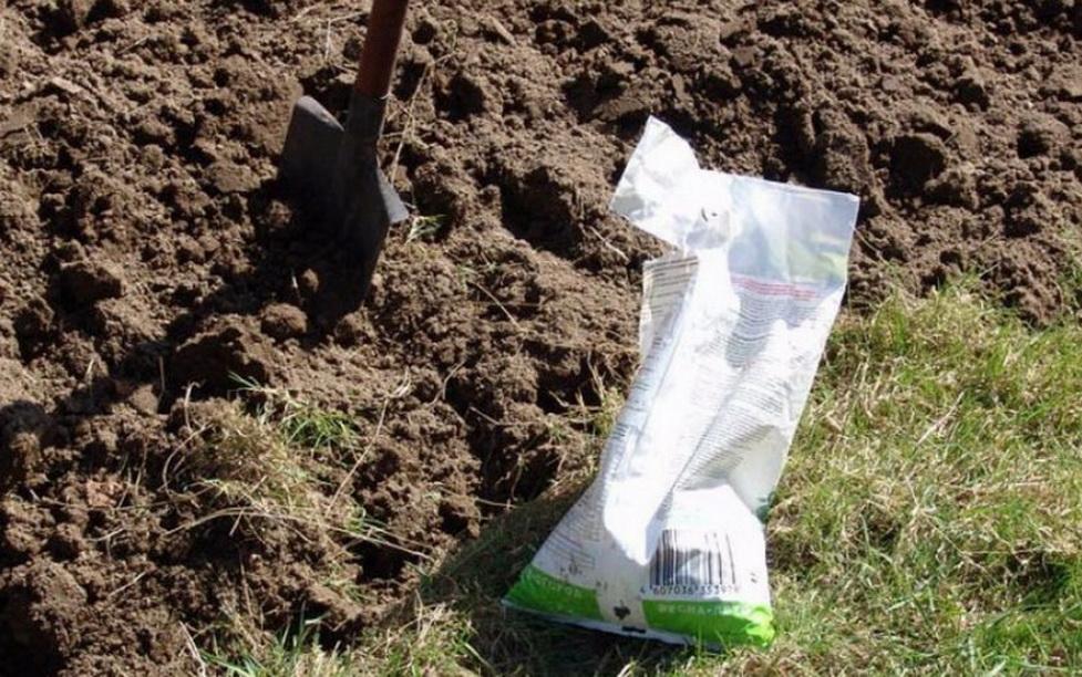 Удобрения для огорода и сада: как правильно выбрать и использовать, какие удобрения вносить при посадке весной