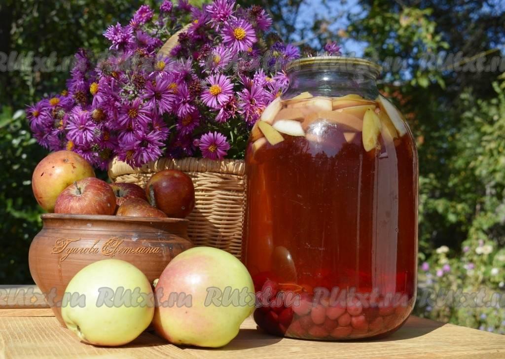 Компот из яблок с корицей на зиму: 4 лучших пошаговых рецепта приготовления