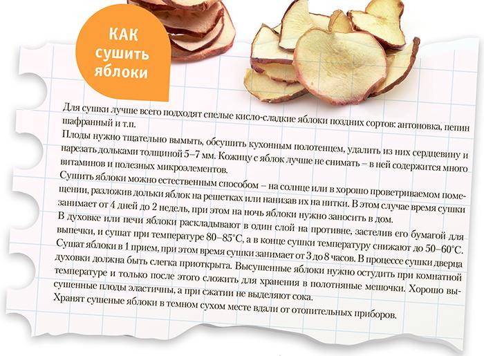 Сушка яблок в домашних условиях: основные правила и способы заготовки сухофруктов