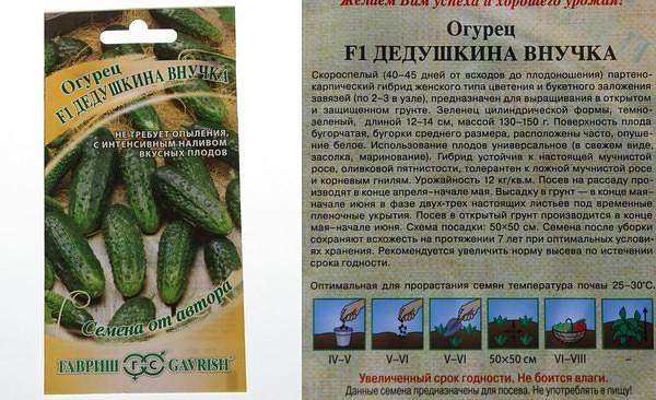Описание огурца Бабушкин секрет f1 и правила выращивания в теплицах