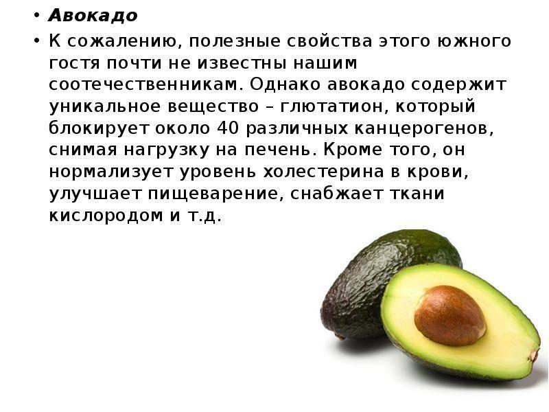 Масло авокадо: польза и вред, советы по применению