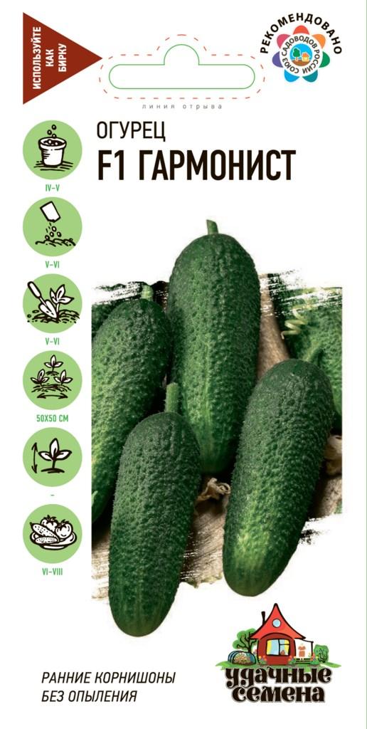 Огурец гармонист f1: описание и урожайность сорта, отзывы, фото