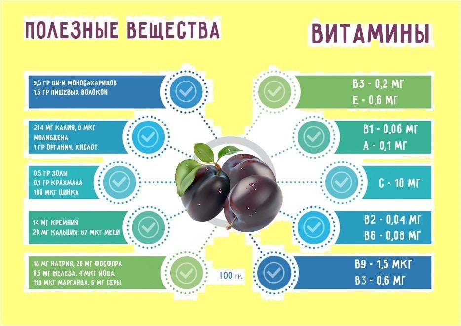 Слива полезные свойства и противопоказания. употребление в лечебных целях