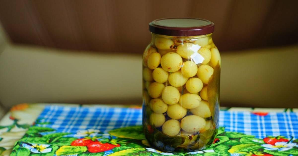 Маринованный виноград: 5 рецептов консервации