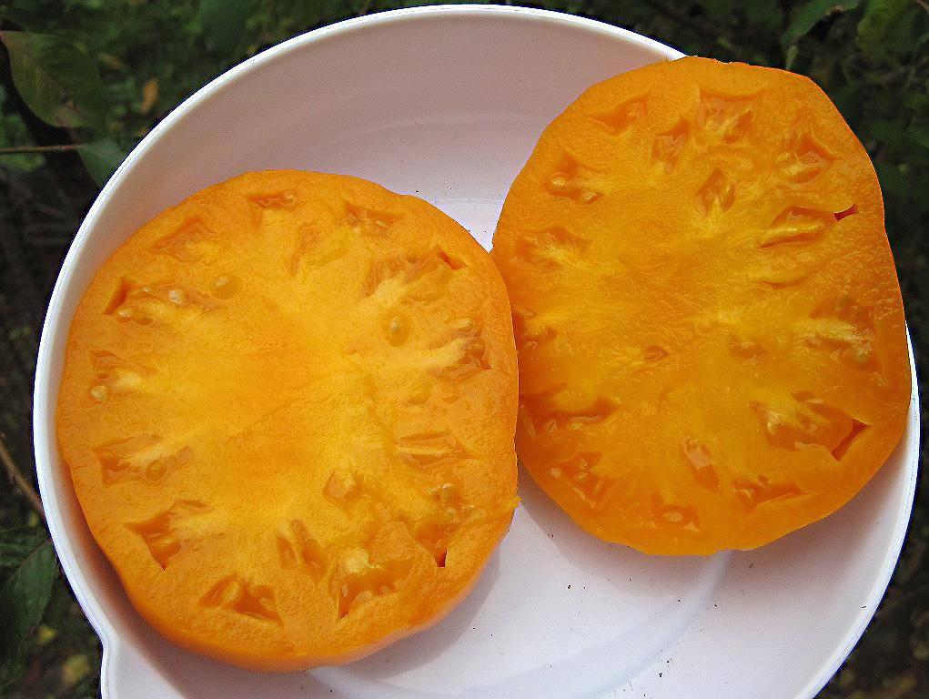 Томат ананас давида: характеристика, описание сорта с фото и видео, отзывы, урожайность