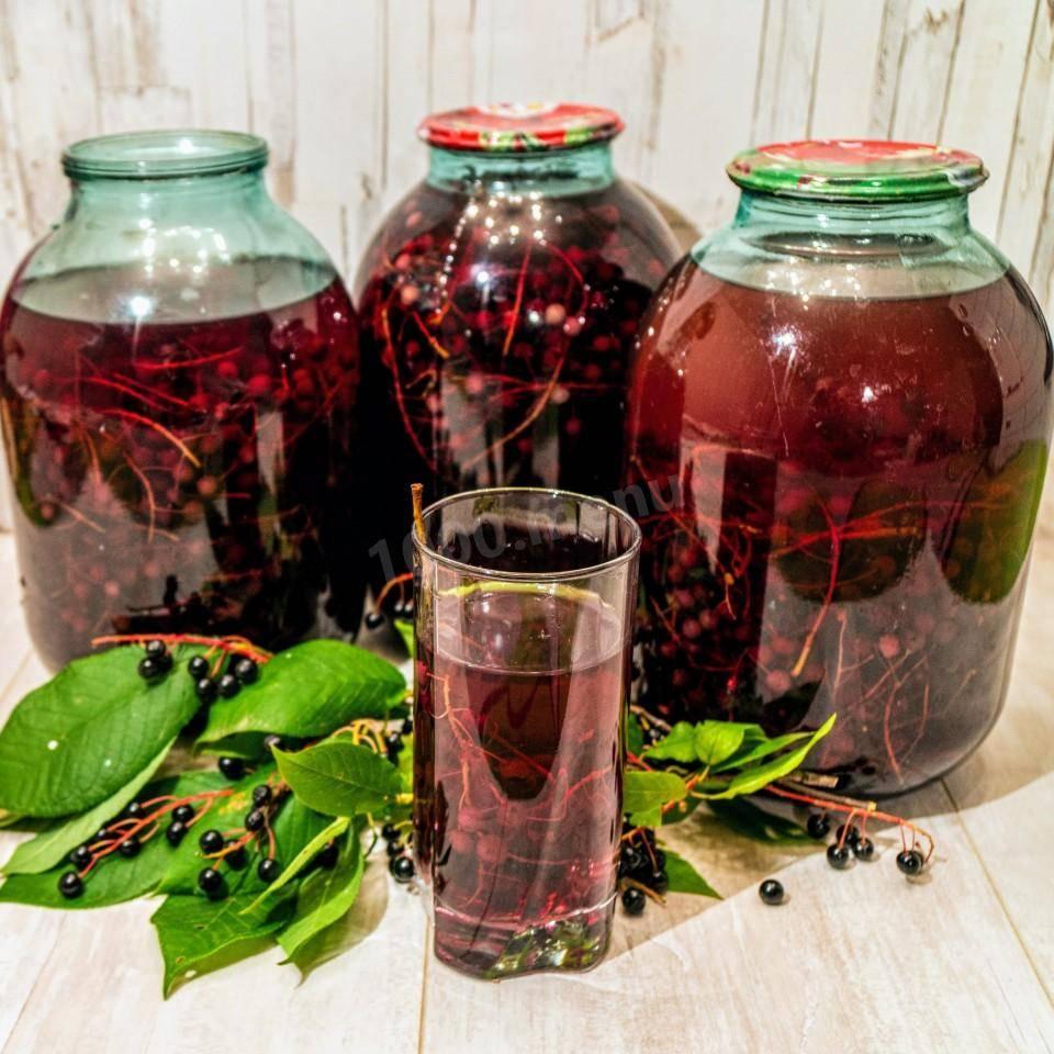 Тархун: 6 рецептов заготовок на зиму » сусеки