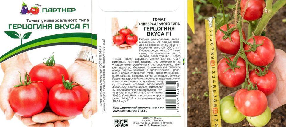Томат гордость застолья f1 (партнёр) - описание сорта гибрида, характеристика, урожайность, отзывы, фото