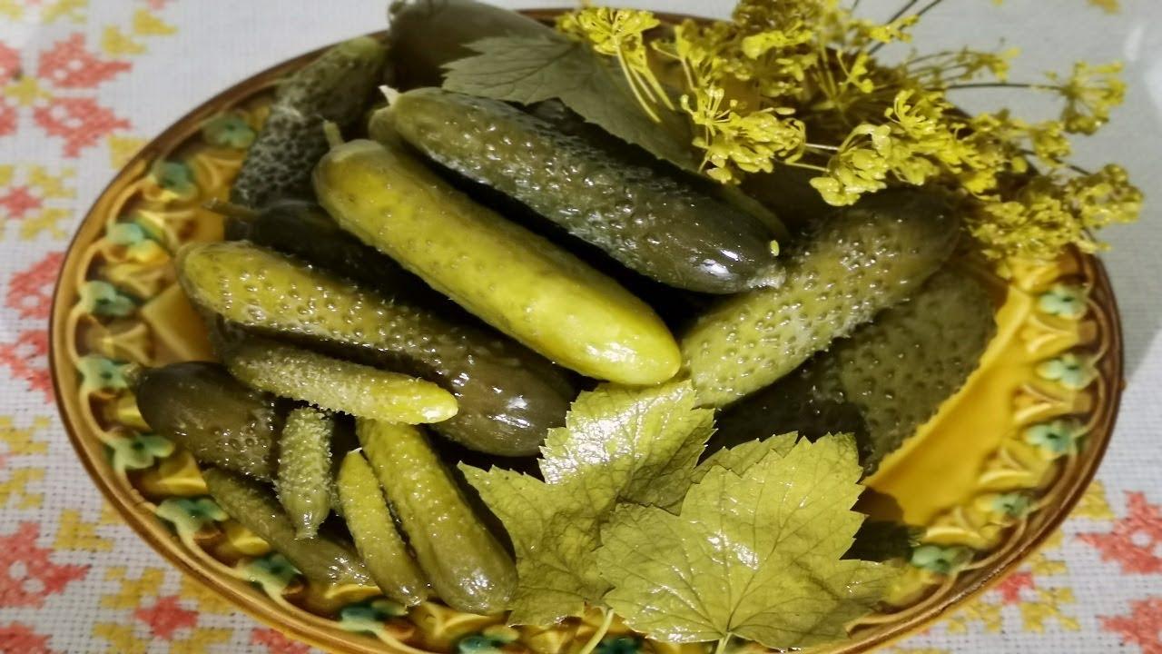 ТОП 13 рецептов соленых огурцов на зиму в банках холодным способом