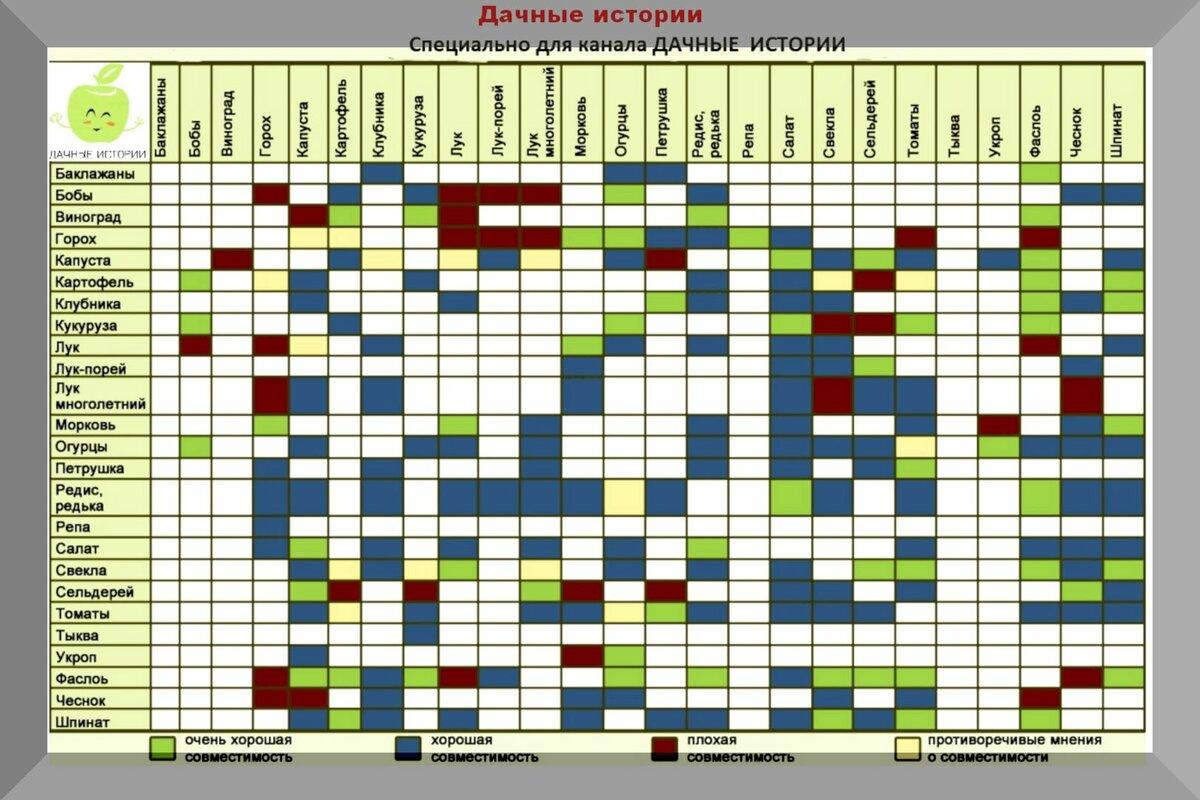 Когда сажать капусту: сроки, когда можно сеять в открытый грунт и теплицу по лунному календарю 2019