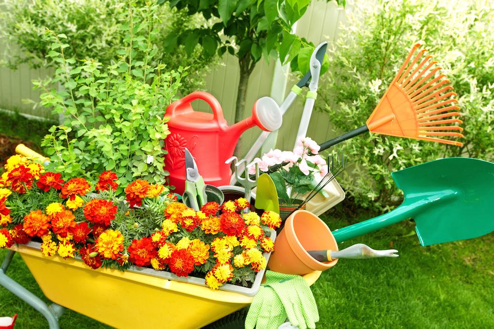 Благоустройство дачного участка: как обустроить сад и огород загородного дома красиво с минимальными затратами, варианты озеленения  - 40 фото